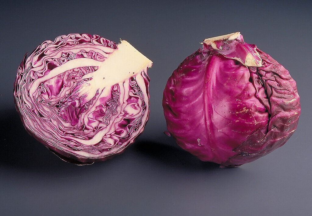 Why is red cabbage useful