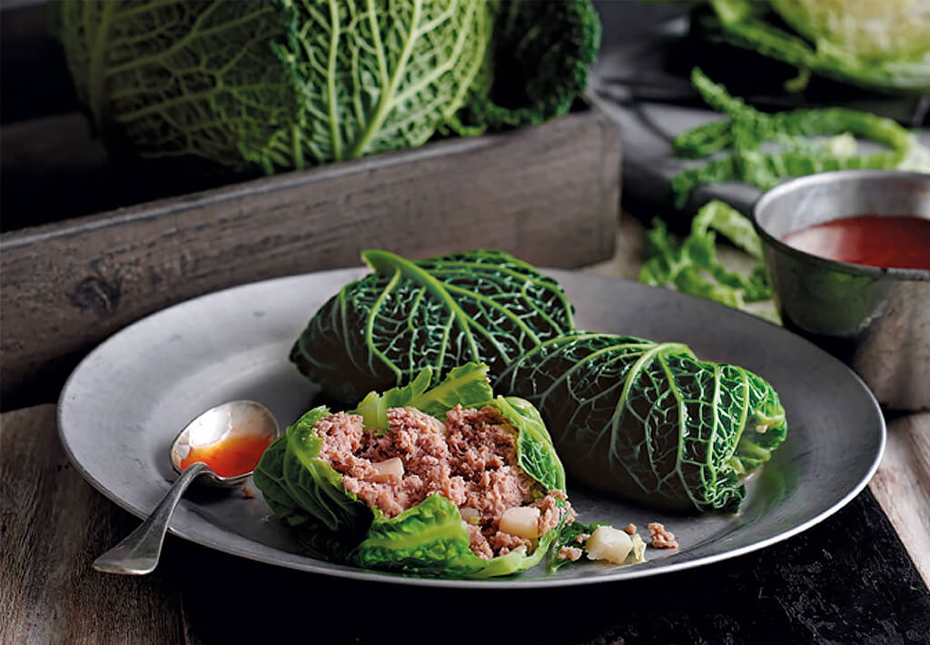 SAVOY CABBAGE: ITS USE AND HARM