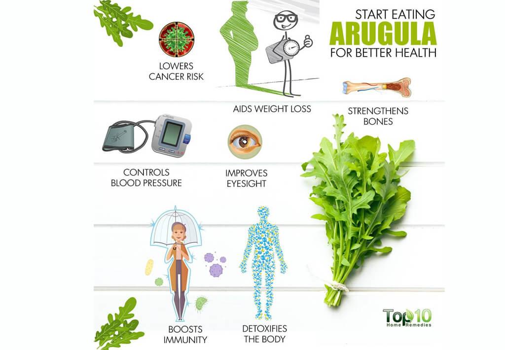 Arugula has a rich vitamin set and many micronutrients